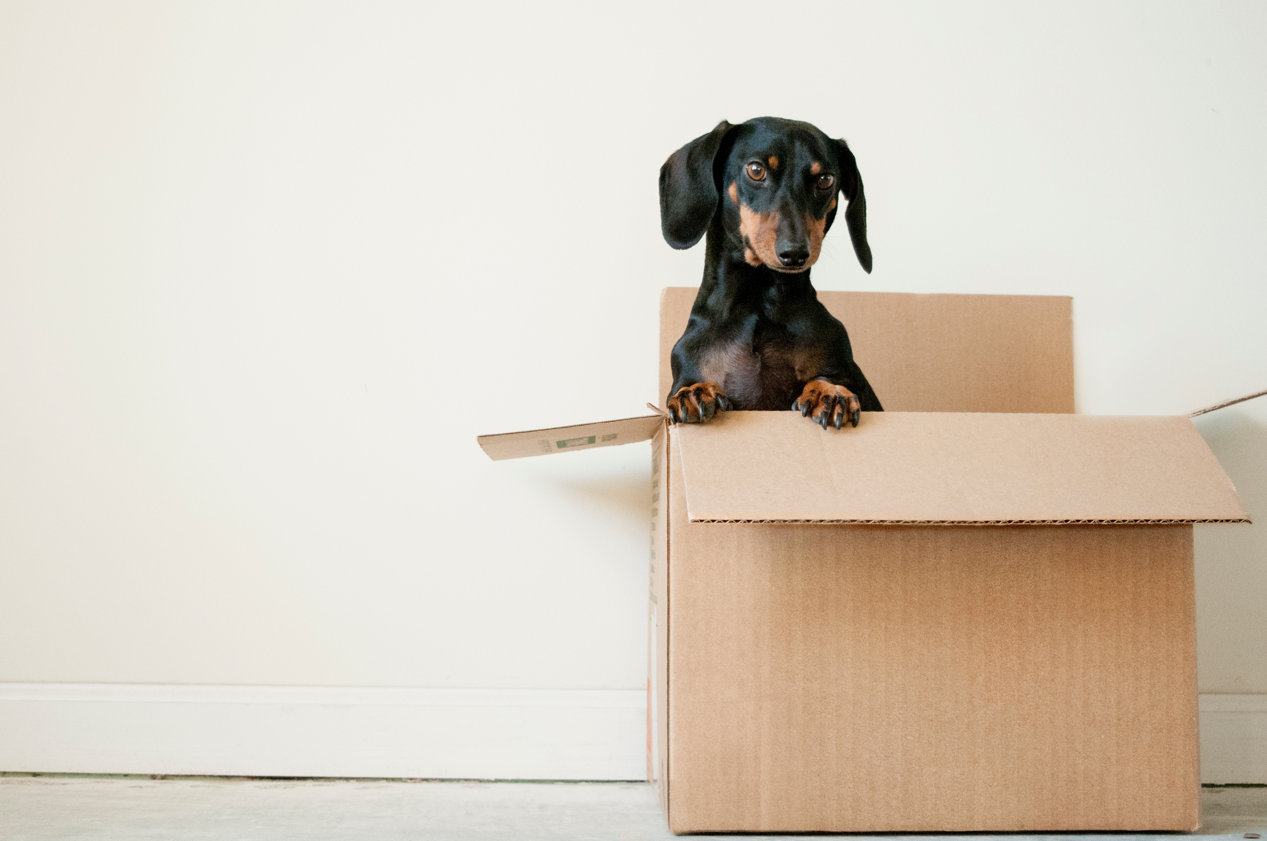 Como organizar una mudanza para una casa más pequeña